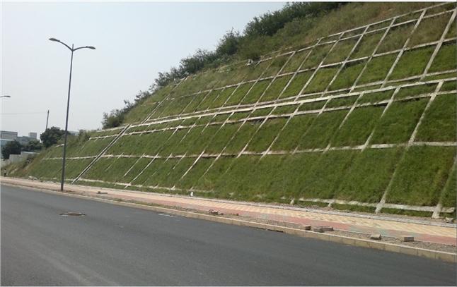劲强方格网塑料模具为麦盖提—喀什高速公路的贡献