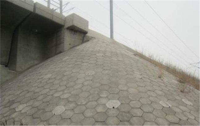 水泥预制块塑料模具-专业厂家贼靠谱